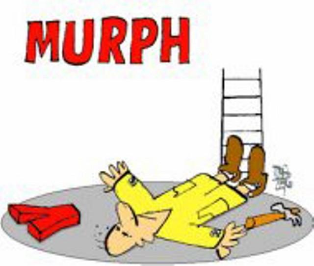 8 leyes de Murphy con base científica (JD)